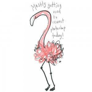 Jane Hirst Illustration flamingo getting used to photoshop