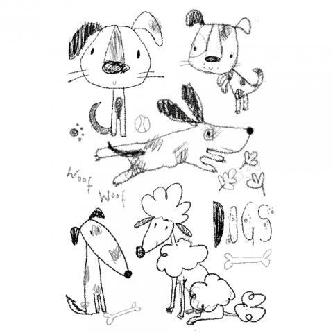 Dog sketches!