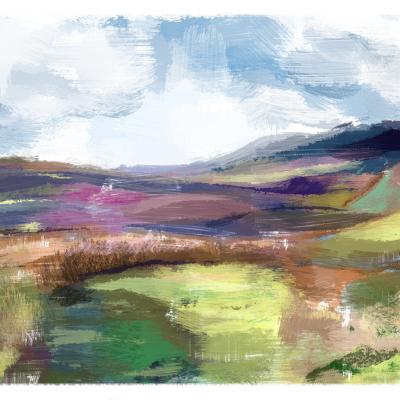 More Dartmoor