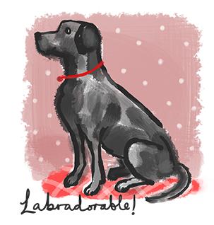 Labradorable!