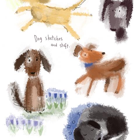 Dog days!